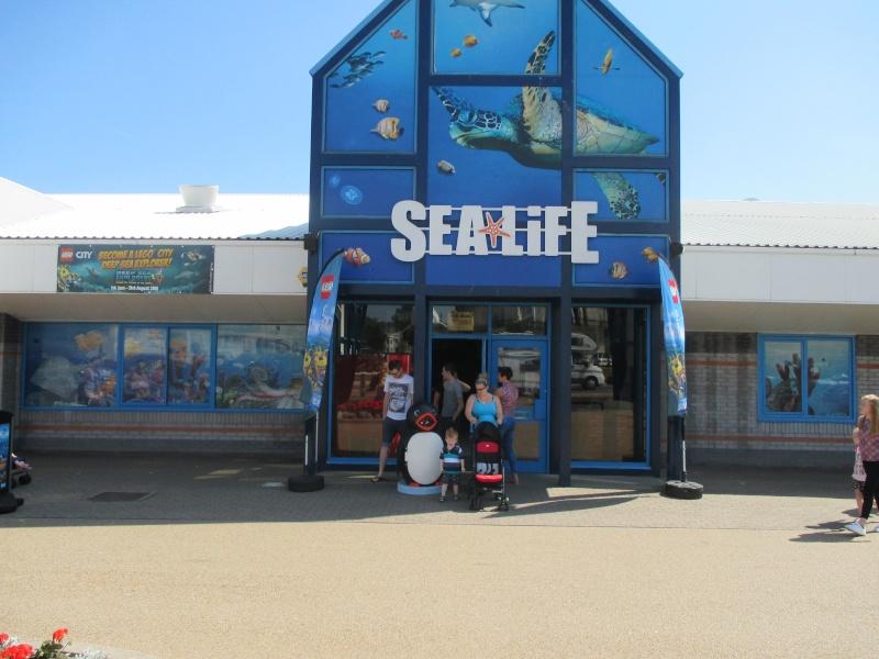Sea Life Centre Gt. Yarmouth 06311