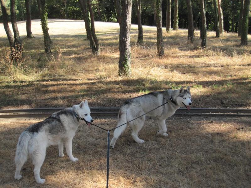 Saskia et Jiro, partie 2 - Page 17 1015