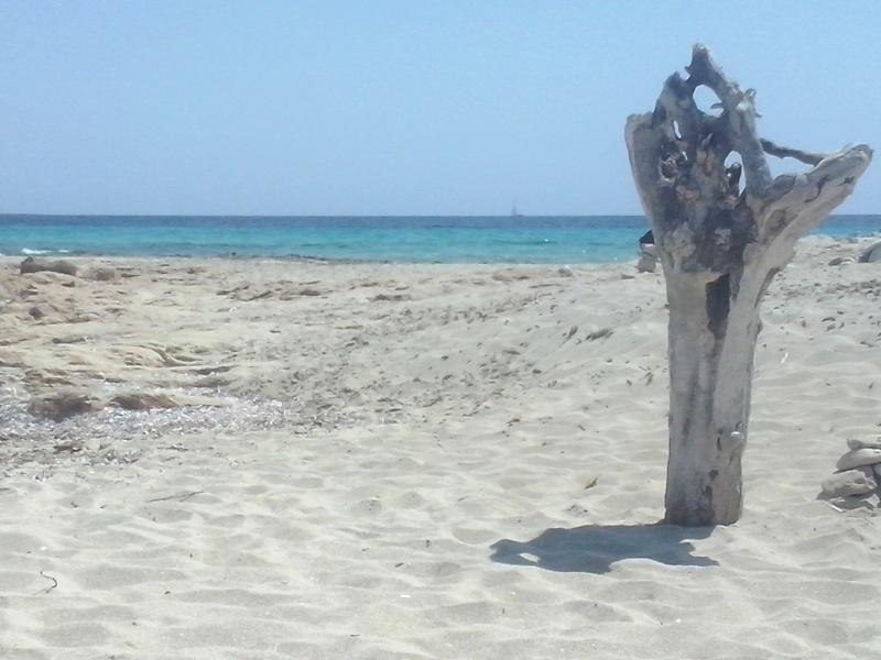 Formentera 22_leg10