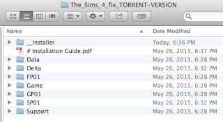 A Guide on HOW TO INSTALL THE SIMS 4 + Addons/DLC on Mac using WINE. Screen24