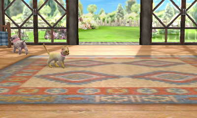 Nintendogs + Cats Bilderthread Hni_0018