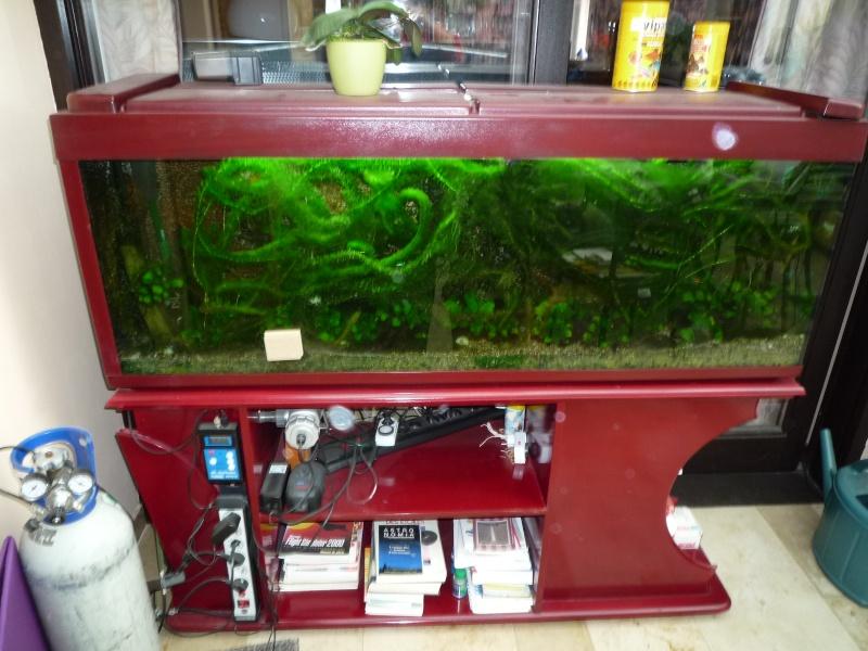 Meuble pour aquarium, en cours Memo0010
