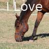Zorte Berria: Nouvelle Chance I_love10