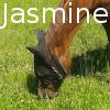 Zorte Berria: Nouvelle Chance Jasmin11