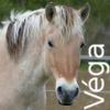 Zorte Berria: Nouvelle Chance Vega10