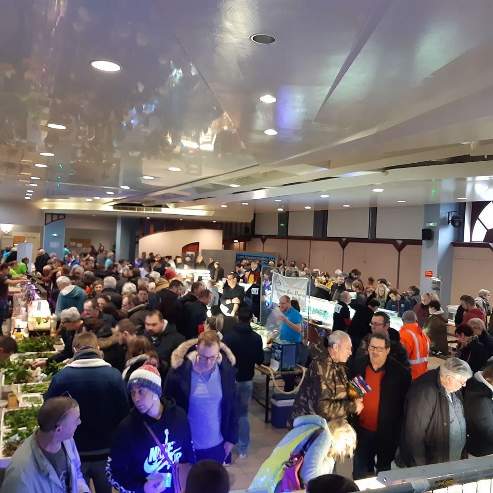 5eme Bourse aquariophile à Courchelette (59) le 2 février 2020 00110