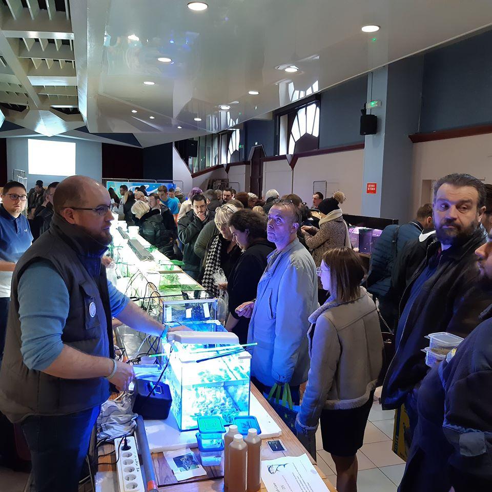 5eme Bourse aquariophile à Courchelette (59) le 2 février 2020 00210