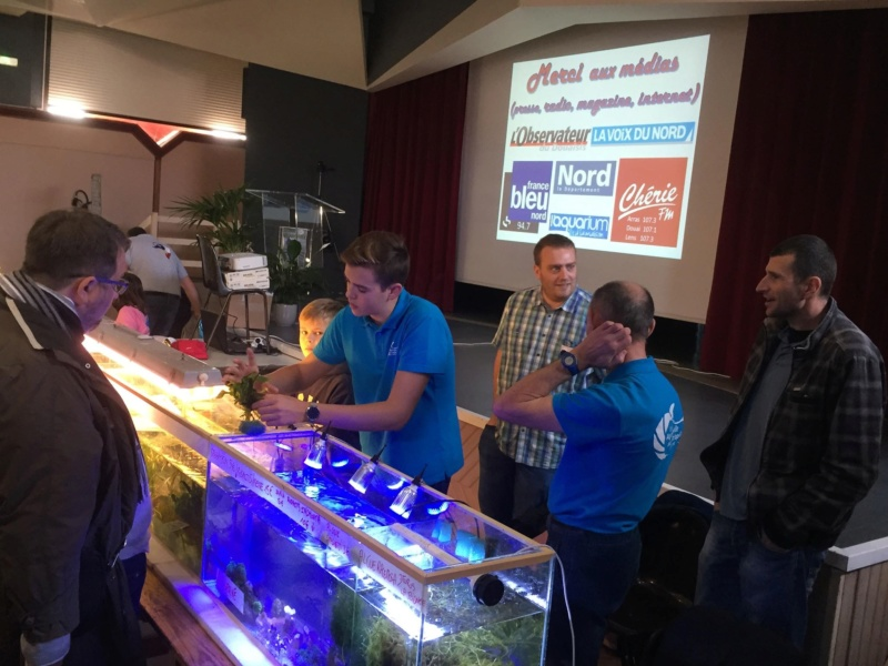 4eme Bourse aquariophile à Courchelette (59) le 4 novembre 2018 Photo112
