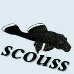 scouss