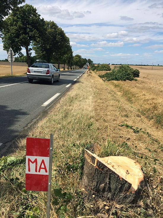 En toute grossièreté - Luçon, Vendée Clgdec10