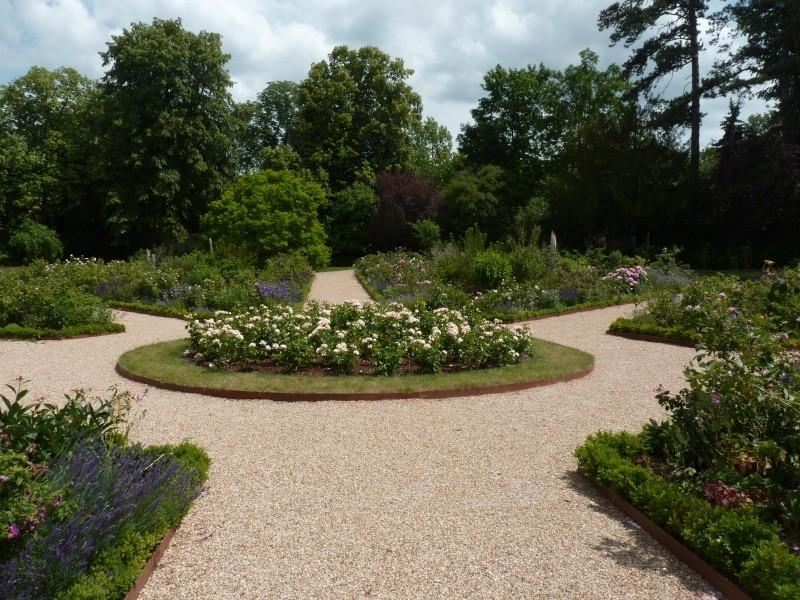 Visite de la roseraie de la Malmaison - Page 2 P1190910