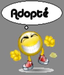 SEEKOO, Husky (m), né le 30.03.2006  REFU Suisse  - Page 2 Adopty10