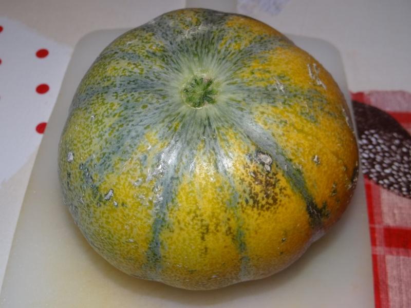 melon - Page 5 Dsc02848