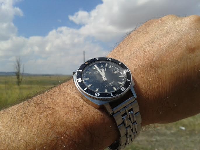 Votre montre du jour - Page 5 Seiko10