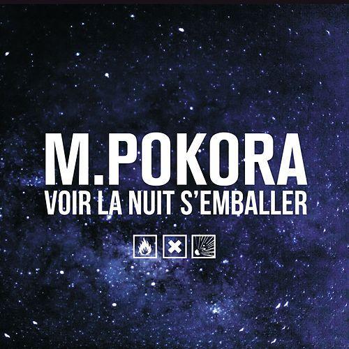 [Musique] M. Pokora 500x5010