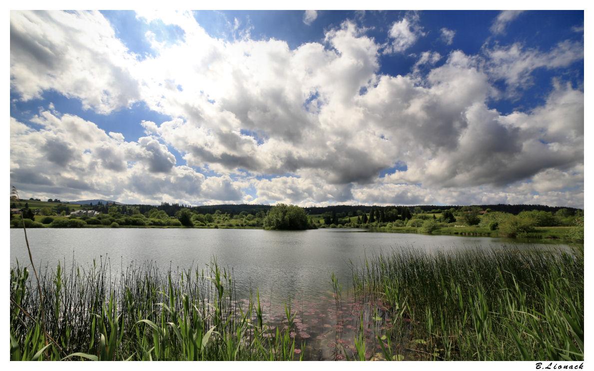 Au lac de Remoray Remora10