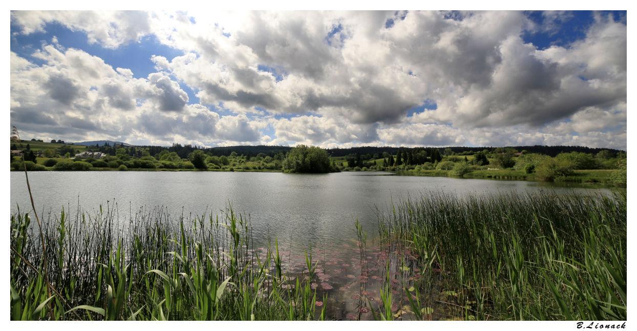 Au lac de Remoray Remora12