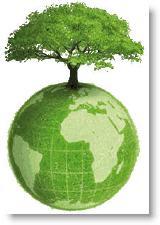 L'Encyclique de Bergoglio, l'écologiste ! Ecolo_10