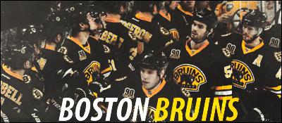 Boston Bruins Bos1110