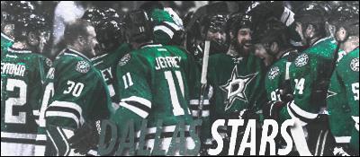 Dallas Stars Dal1110