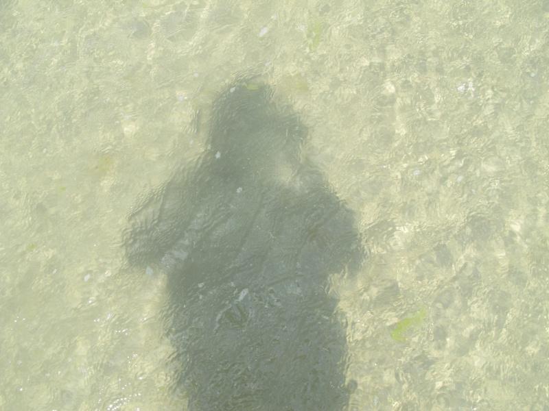 Je ne suis que l'ombre de moi-même !! - Page 3 Baie_d13