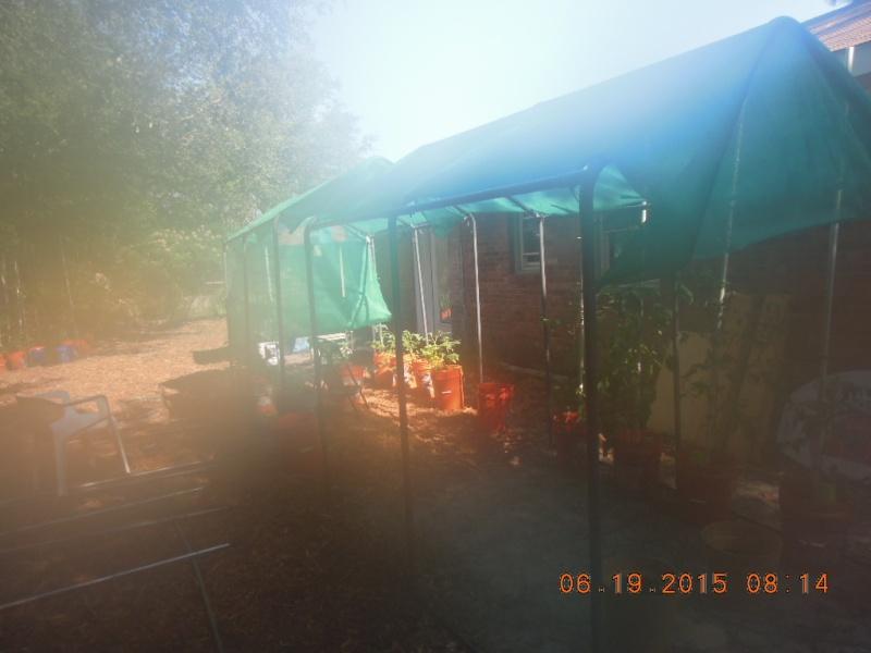 Lower South June 2015 Dscn2226