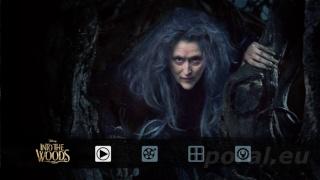 [BD + DVD] Into the Woods : Promenons-Nous Dans Les Bois (24/03/2015 aux USA) Intoth10