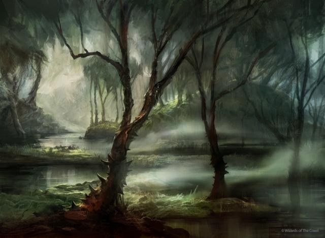 Images Grande Jungle - Page 2 Swamp_10