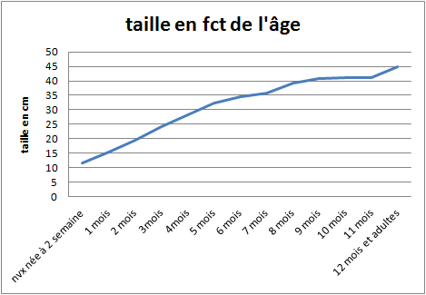 Taille et poids pogos?  Taille10