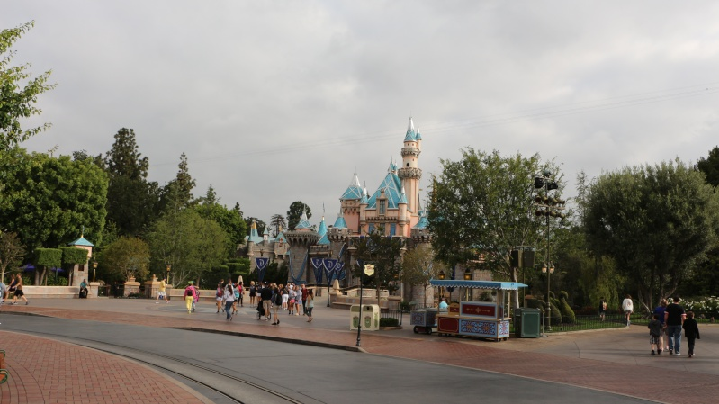[Disneyland Resort Diamond Celebration] Trip Report 1er au 7 Juin 2015 - Page 3 J6_1910