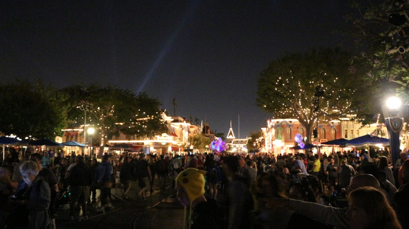 [Disneyland Resort Diamond Celebration] Trip Report 1er au 7 Juin 2015 - Page 3 Usa_dl25