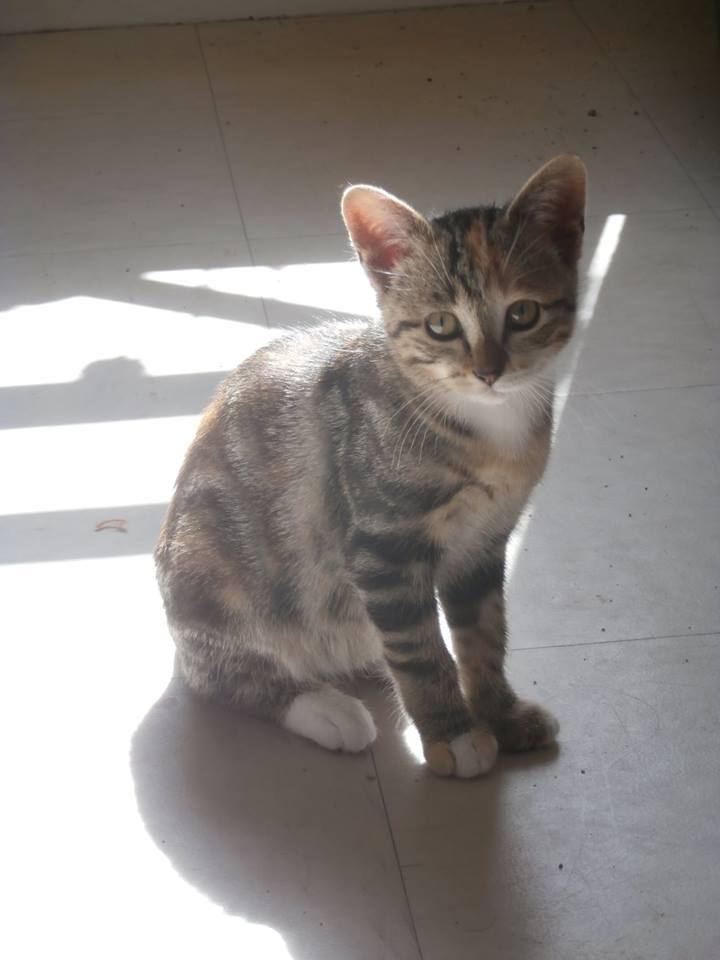 Je vous présente ma Lilou Lilou210