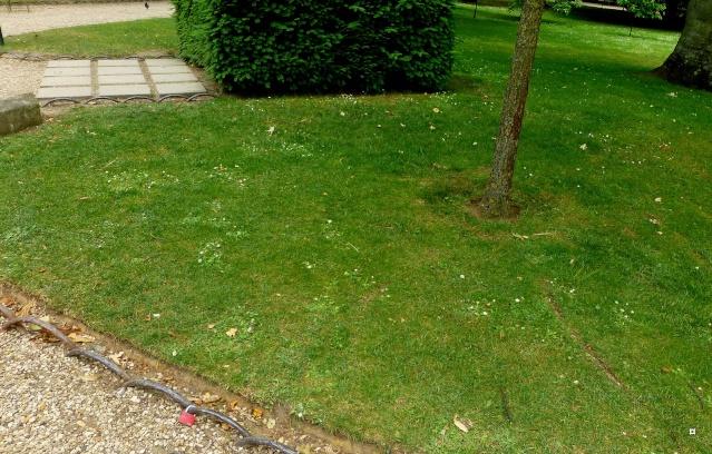 Choses vues dans le jardin du Luxembourg, à Paris - Page 3 Escald20