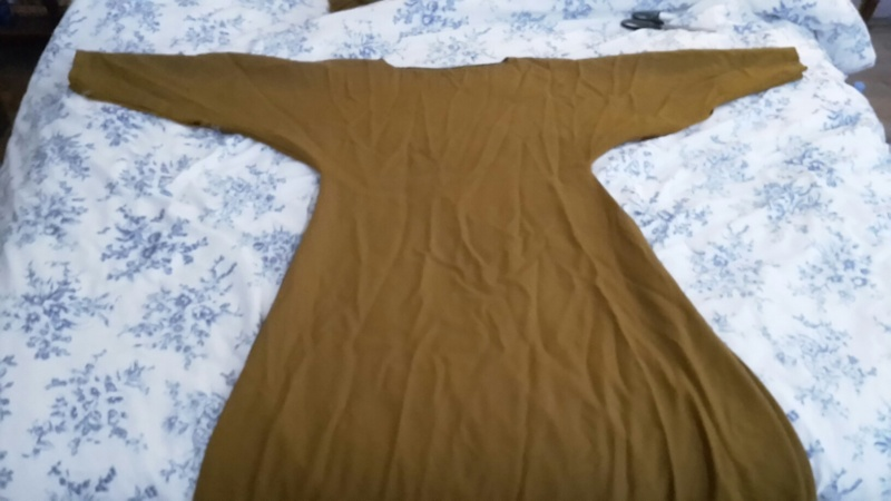 """Robe XIIIe """"de paresseuse"""" 20150611"""