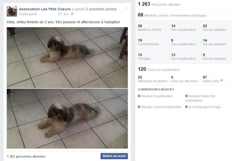 Records de publications facebook Temp15