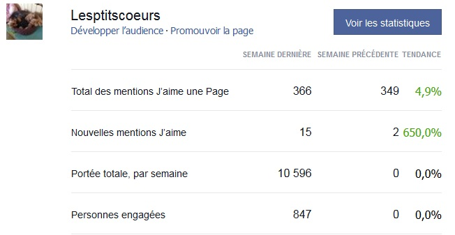 Statistiques d'audience forum et facebook Temp23