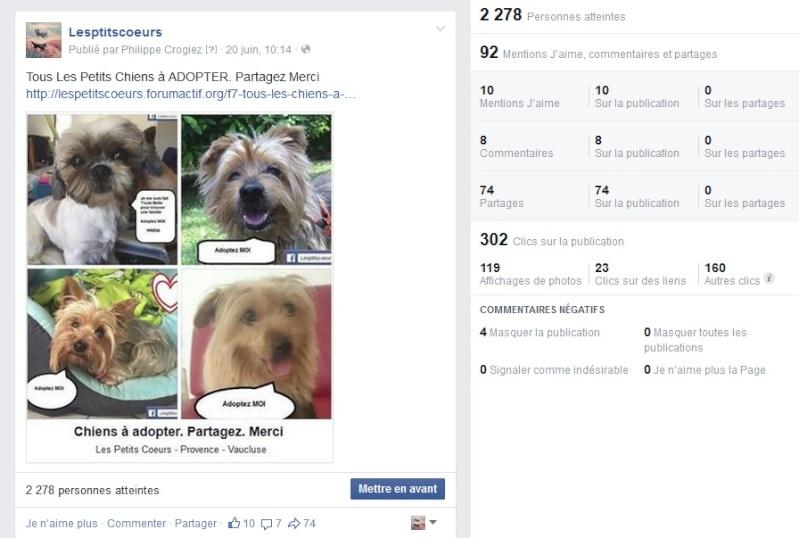 Records de publications facebook Temp31