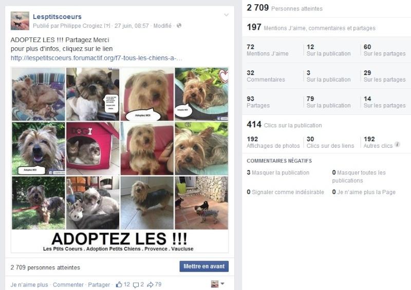 Records de publications facebook Temp34