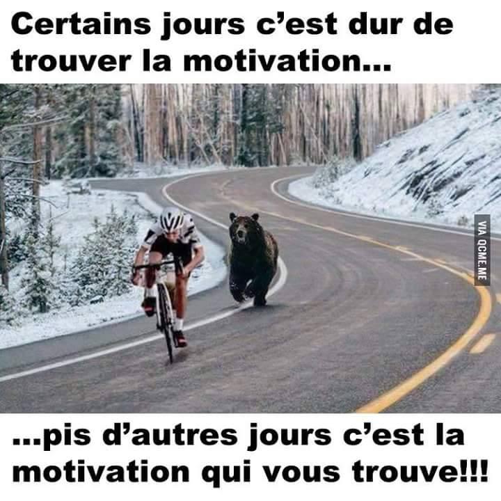 2015 Tour de France  - Page 2 11811410