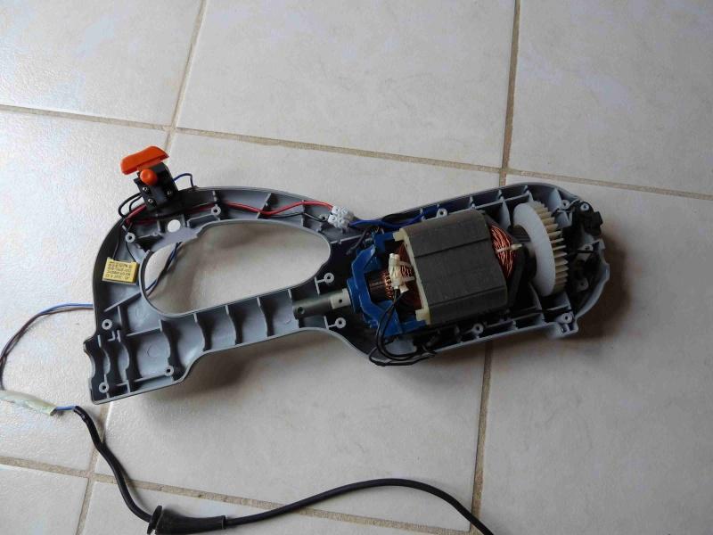moteur coupe bordure P1010110
