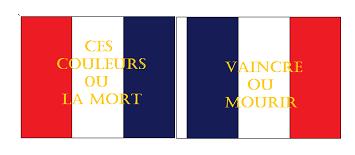 Armée des Alpes 1815 Fanion11