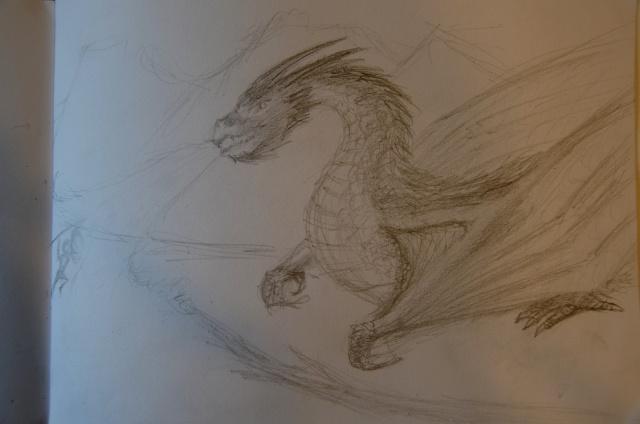Mes dessins - Page 4 Dsc_1413