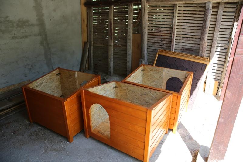 Des niches pour nos nouveaux enclos ...  Hx9a4210