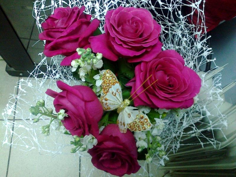 Фотографии цветов и деревьев - Страница 10 20150710