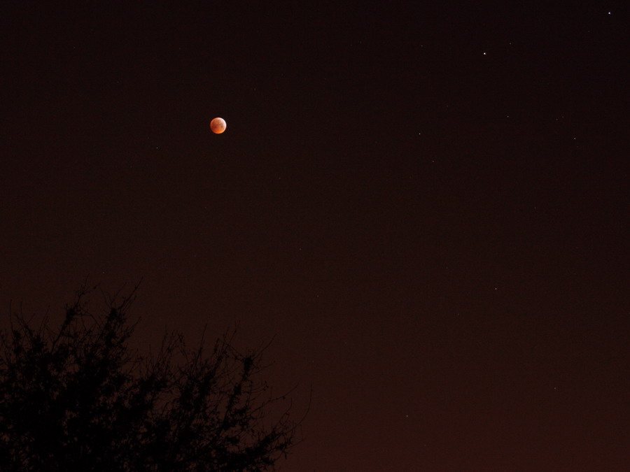 Eclipse de Lune chez le Chti EtaCas ! Eclips15