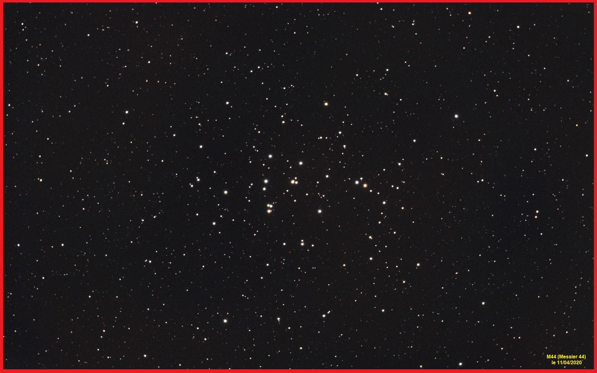 Ma deuxième photo CP : M44 M44_im11