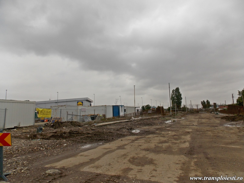 Construirea Pasajului de la Gara de Vest Dscn0212