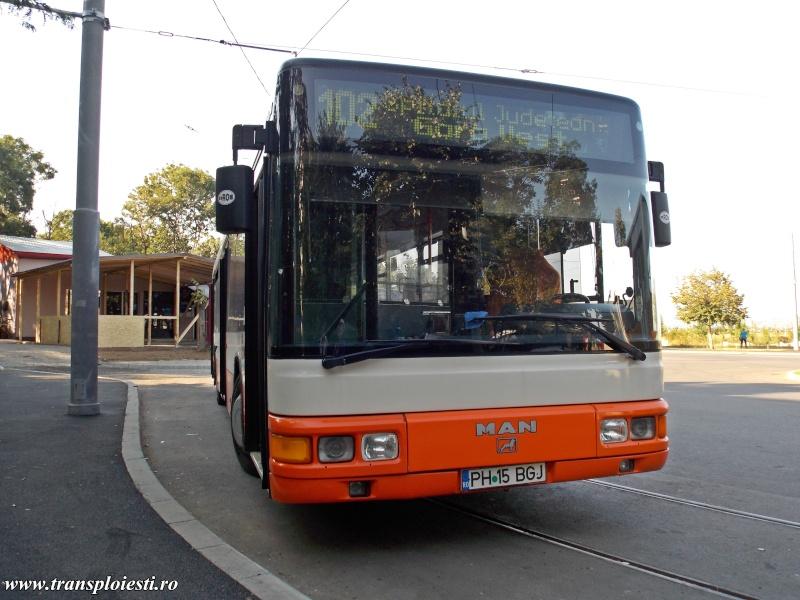 MAN NL 313 Dscn0251