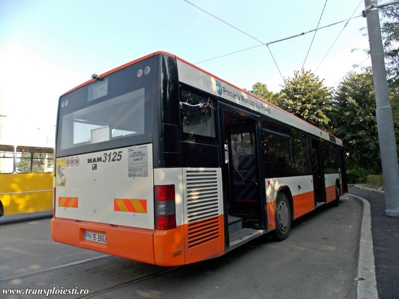 MAN NL 313 Dscn0252