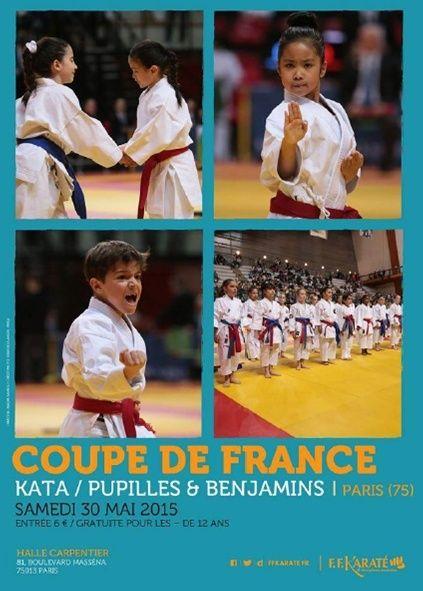 Coupe de France Kata et Combat mai 2015 Image010